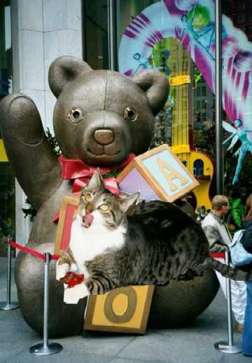 FAO Schwarz Bear and Mooch